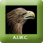 TP_AIWC